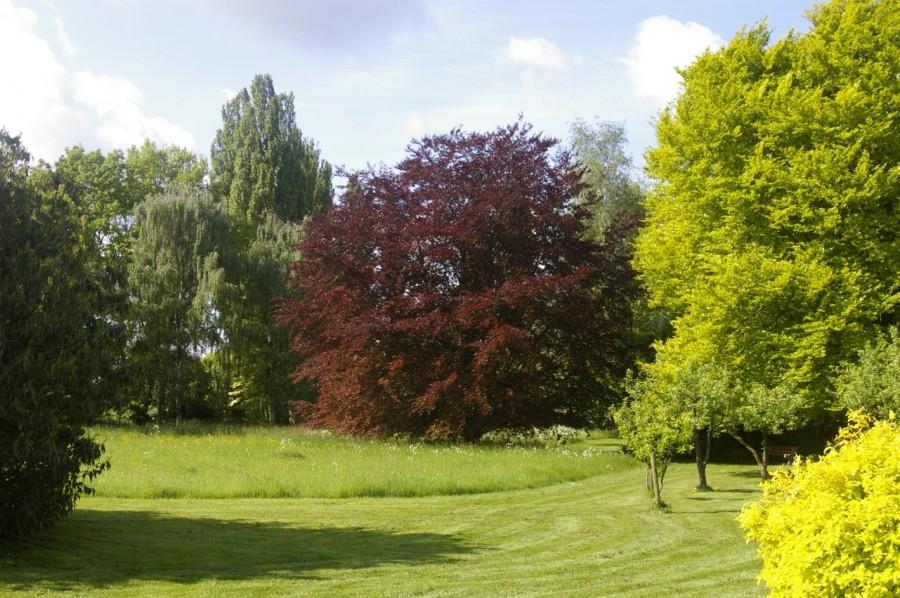 De tuin van Samaya is in Engelse landschapsstijl