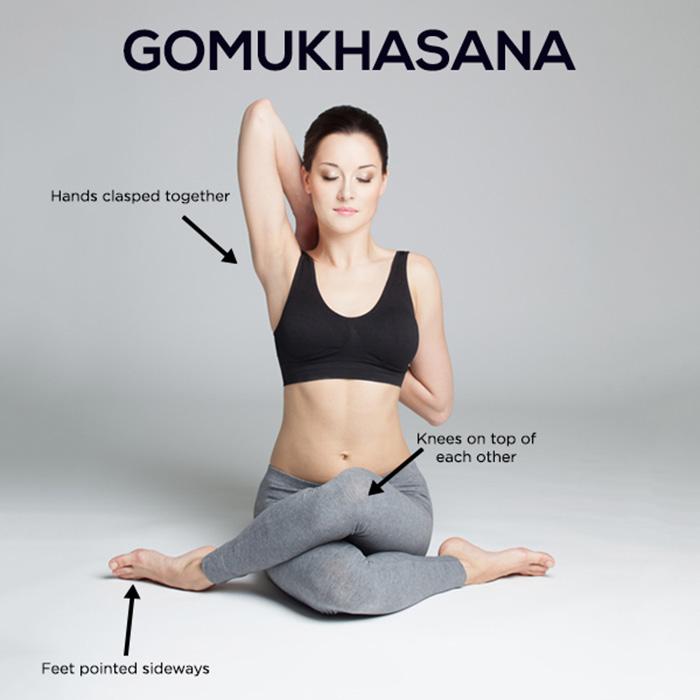 Gomukhasana-and-benefits